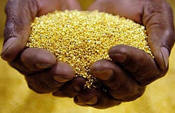 İnsan dışkısında altınmı var?