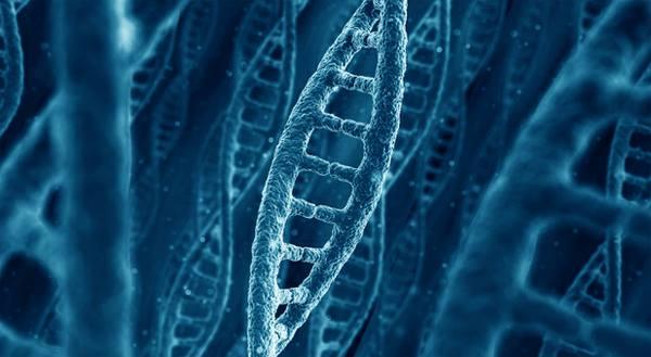 """DNA'nın Hiper İletişimi : İçimizdeki """"Yaşayan İnternet"""""""