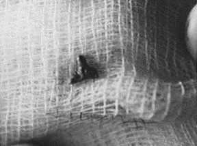 Image Result For Alien Implant Movie