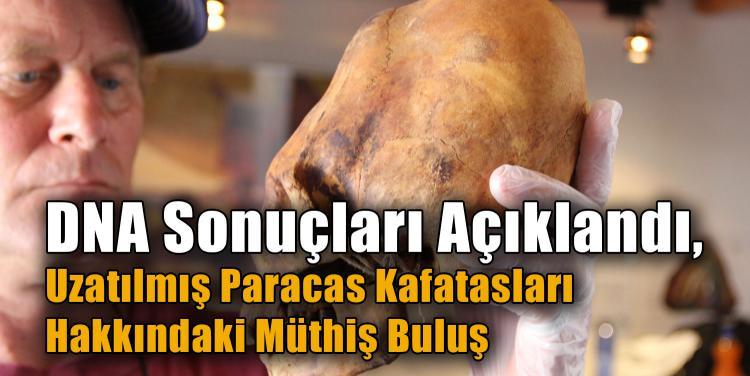 DNA Sonuçları Açıklandı, Uzatılmış Paracas Kafatasları Hakkındaki Müthiş Buluş