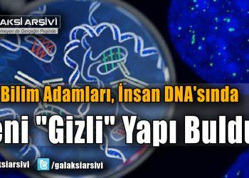 """Bilim Adamları, İnsan DNA'sında Yeni """"Gizli"""" Yapı Buldu!"""