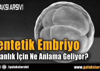 Sentetik Embriyo İnsanlık İçin Ne Anlama Geliyor?
