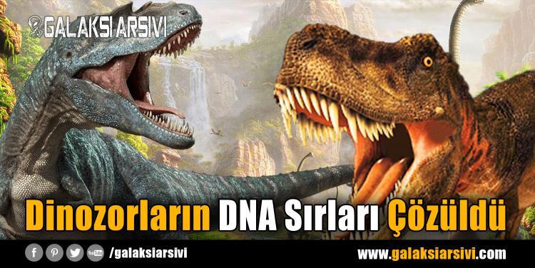 Dinozorların DNA Sırları Çözüldü