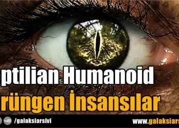Reptilian Humanoid Sürüngen İnsansılar