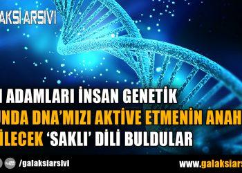 BİLİM ADAMLARI İNSAN GENETİK KODUNDA DNA'MIZI AKTİVE ETMENİN ANAHTARI OLABİLECEK 'SAKLI' DİLİ BULDULAR
