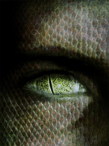 reptilian-eye
